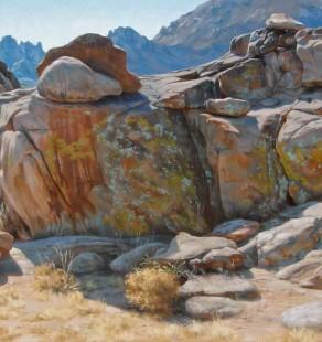 Lichen Mosaic, 24×48 (sold)