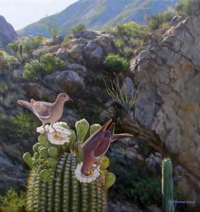 Desert Nectar, 24×24 (sold)